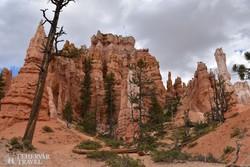 séta a sziklaoszlopok vagy sziklatűk egyedülálló világában