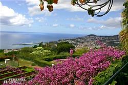 kilátás a Botanikus Kertből Funchalra