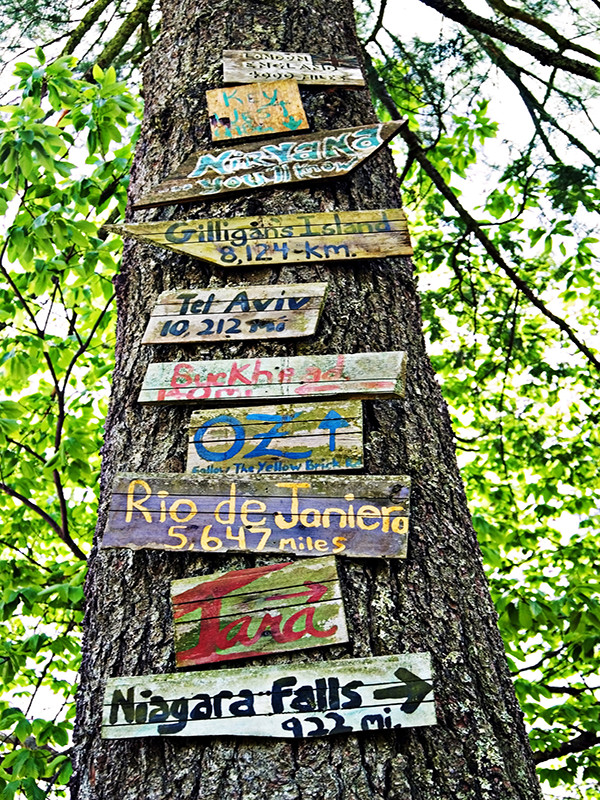 Signs on a Tree