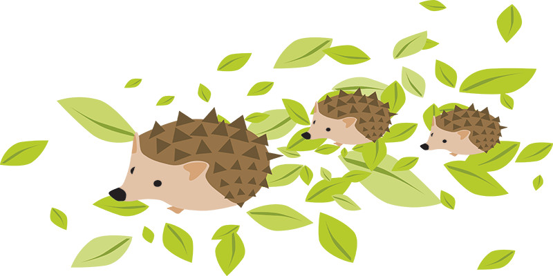 Mother and Baby Hedgehogs