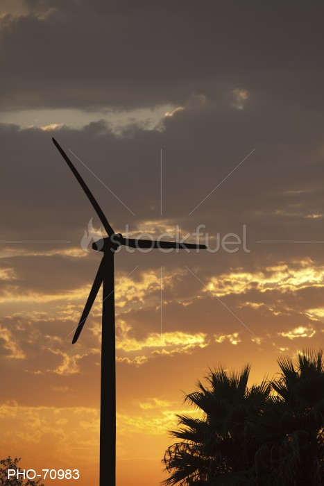 Silhouetted Wind Turbine