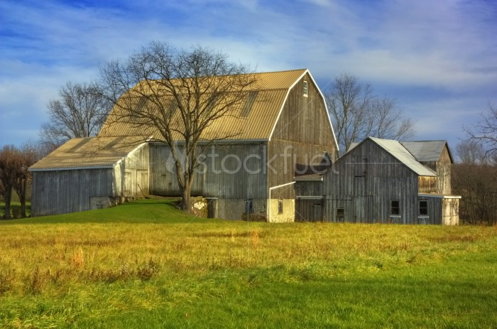 Old Barn in Autumn