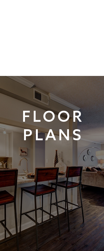 View our floor plans at The Eva