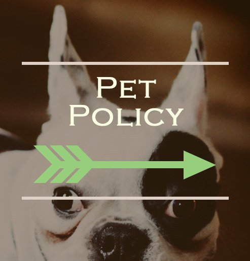 Pet information for our Tulsa apartments