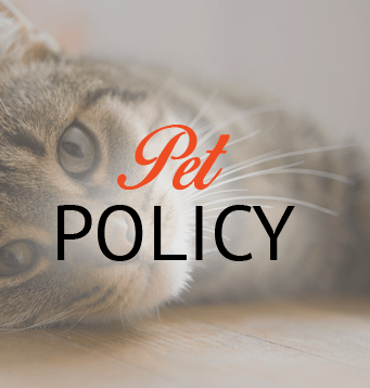 Pet Policy informations