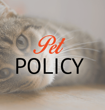 Pet Policy informations for apartments in El Paso
