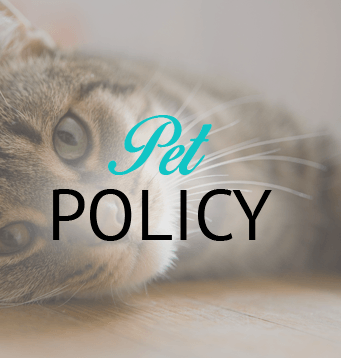 Information about our Ridgeland apartment community's pet policy