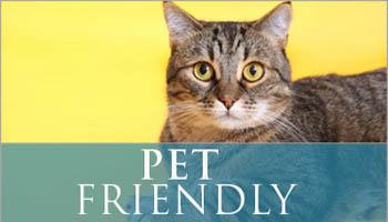 Pet Friendly at The Villagio in Fayetteville