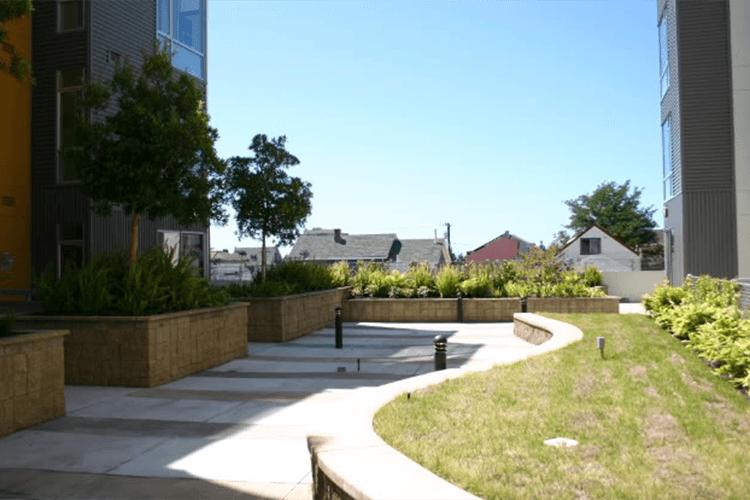 Beautiful landscaping at 901 Jefferson