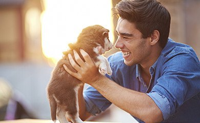 Pet friendly apartments in Smyran