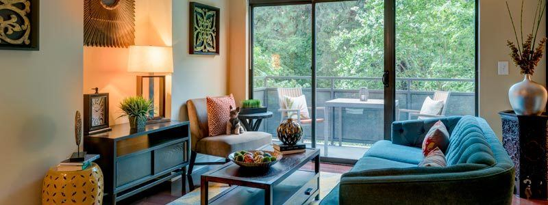 Pet friendly apartments in Atlanta