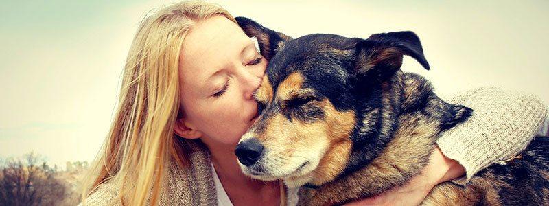 Pet friendly apartments in Fairfield CA