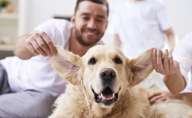 Pet friendly apartments in Snoqualmie WA
