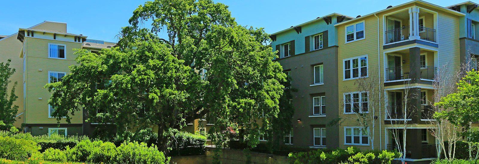 Apartments in Walnut Creek CA