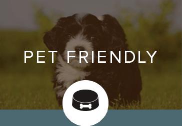 Pet friendly apartments in Tucker GA