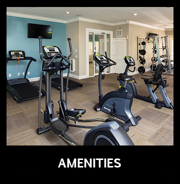 View our many amenities