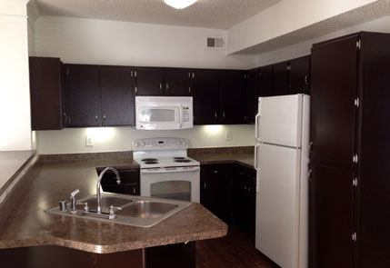 Modern kitchens at the apartments in Richardson, TX