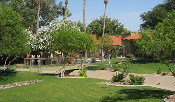 See what our Tucson community has to offer