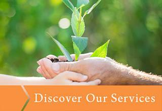 Discover the services that  offers