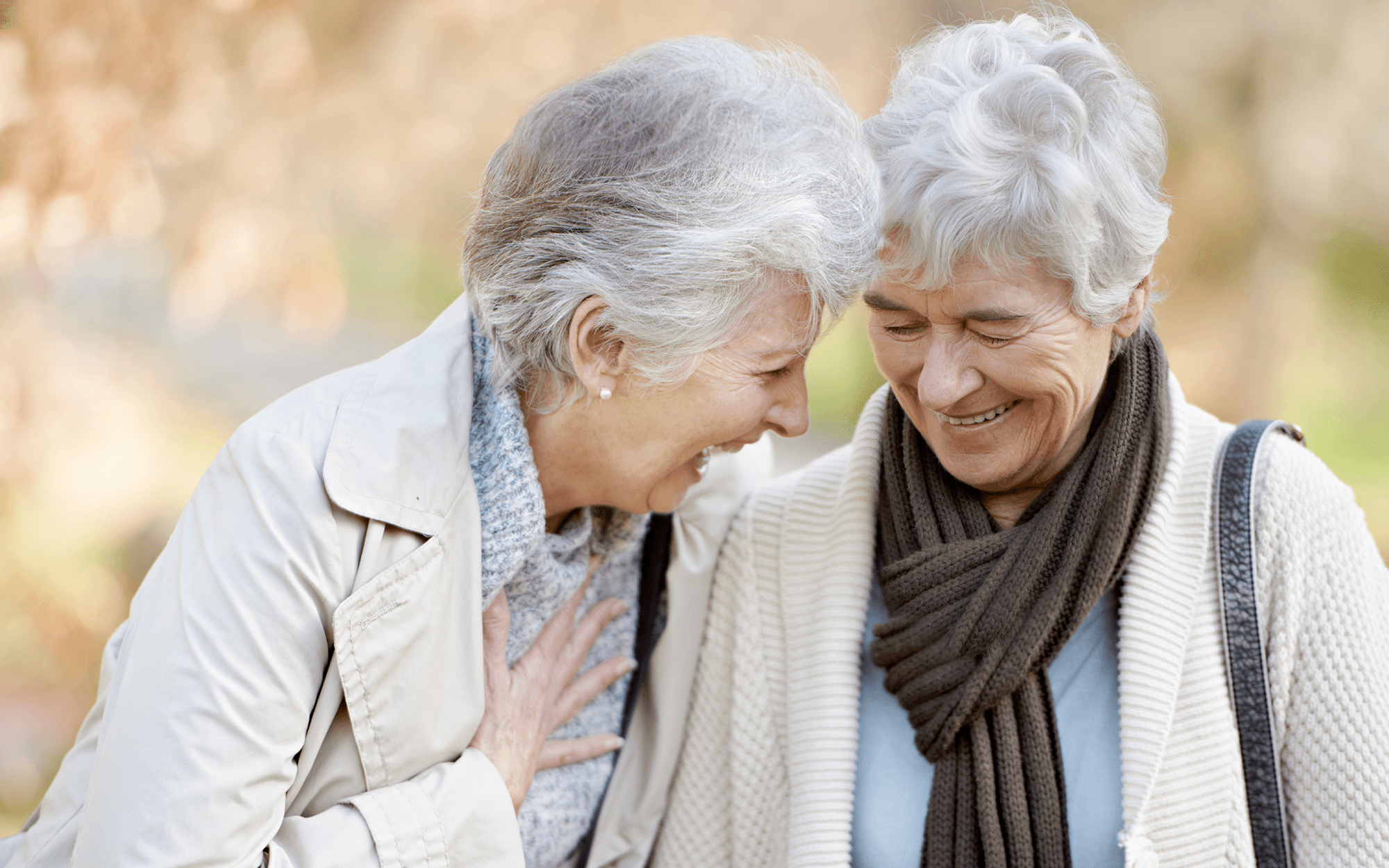 charleston senior personals Christian singles events, activities, groups in south carolina (sc) for fellowship, bible study, socializing also christian singles conferences, retreats, cruises, vacations.
