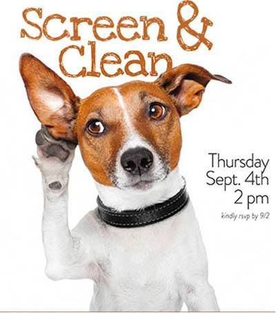 Screen & Clean - activities at The Garden House in Anderson, SC