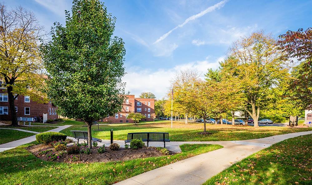 Highland Montgomery Park Like Landscaping in Highland Montgomery, NJ