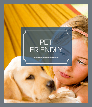 Pet friendly apartments for rent in Huntersville
