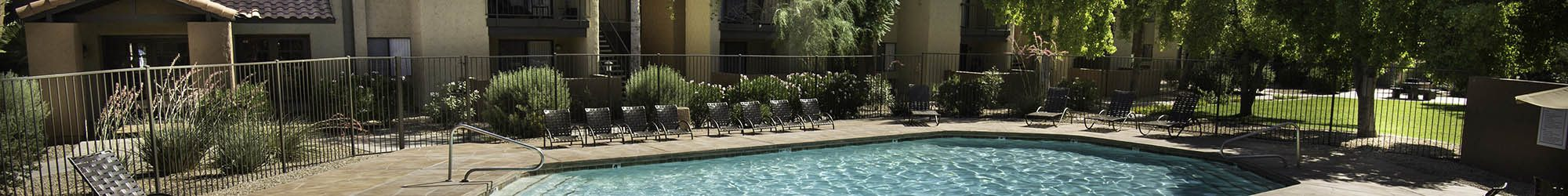 Pet friendly at the apartments for rent in Chandler
