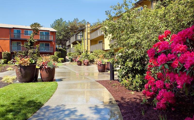 Beautiful gardens at Bellevue apartments