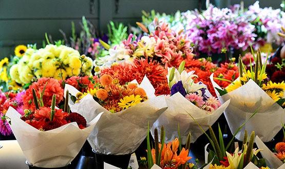 Beautiful flowers in Seattle