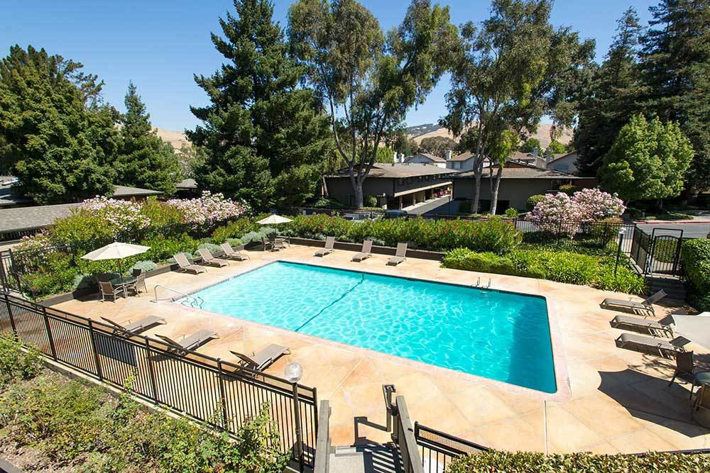 Welcome to Sofi Fremont! We have an amazing pool!