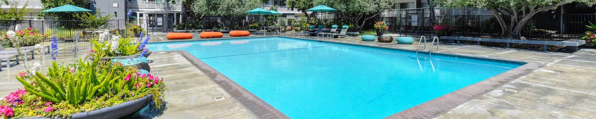 Apartments in Sunnyvale offering