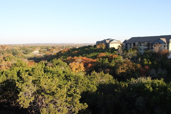 Nature Views from Our Luxury Apartments in Austin, Texas