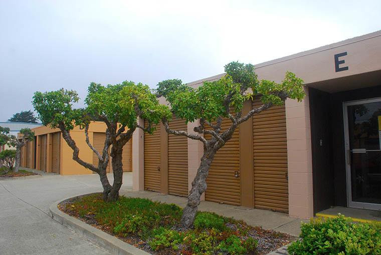 Landscaping around our self storage units in Pacifica