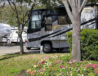 Well Landscaped at AllStar RV Resort