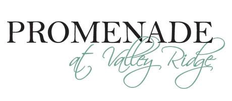Promenade At Valley Ridge
