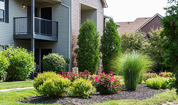 Exterior landscaping at the apartments in Carmel, IN