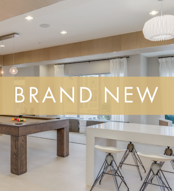Brand new apartments at Lux