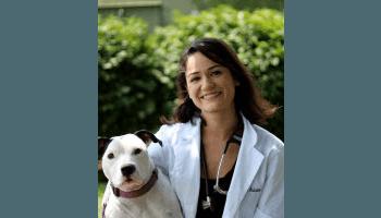 Dr. Ardisana of Stateline Hillcrest Small Animal Hospital