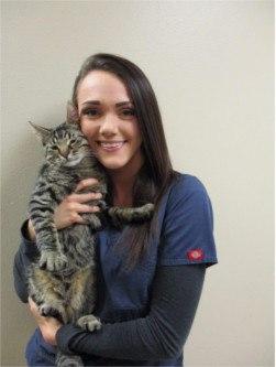 Ashlyn at Sioux Falls Animal Hospital