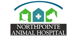 Northpointe Animal Hospital