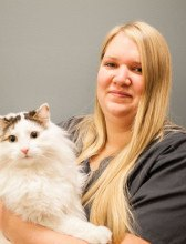 Stephanie Davis at Northpointe Animal Hospital