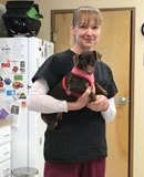Amy Jo, LVT at Muskegon Animal Hospital