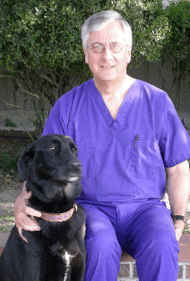 Dr. Haase at Baton Rouge Animal Hospital