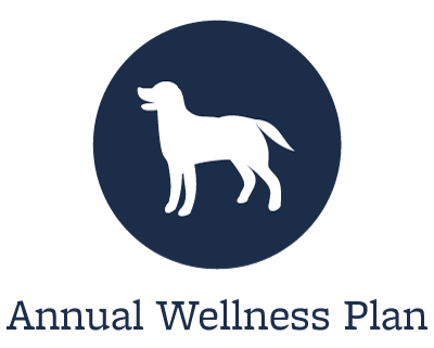 Animal Hospital wellness plans offered in Wheaton