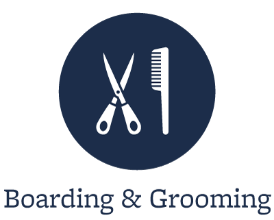 Boarding and grooming at our animal hospital in Buffalo