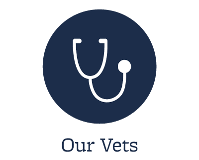 Our animal hospital veterinarians in Elkhart