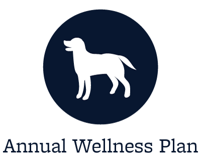 Annual wellness plans at animal hospital in Pocatello