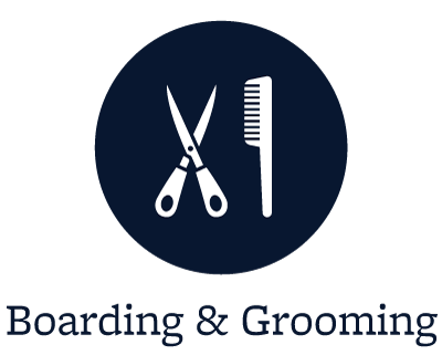 Grooming for your pets in Arlington