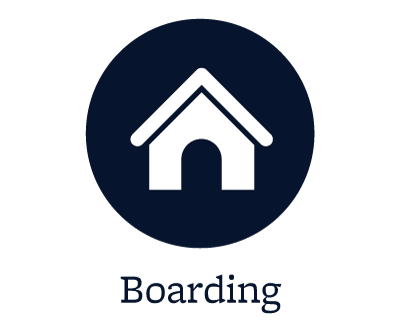 Boarding for your pets in Roswell